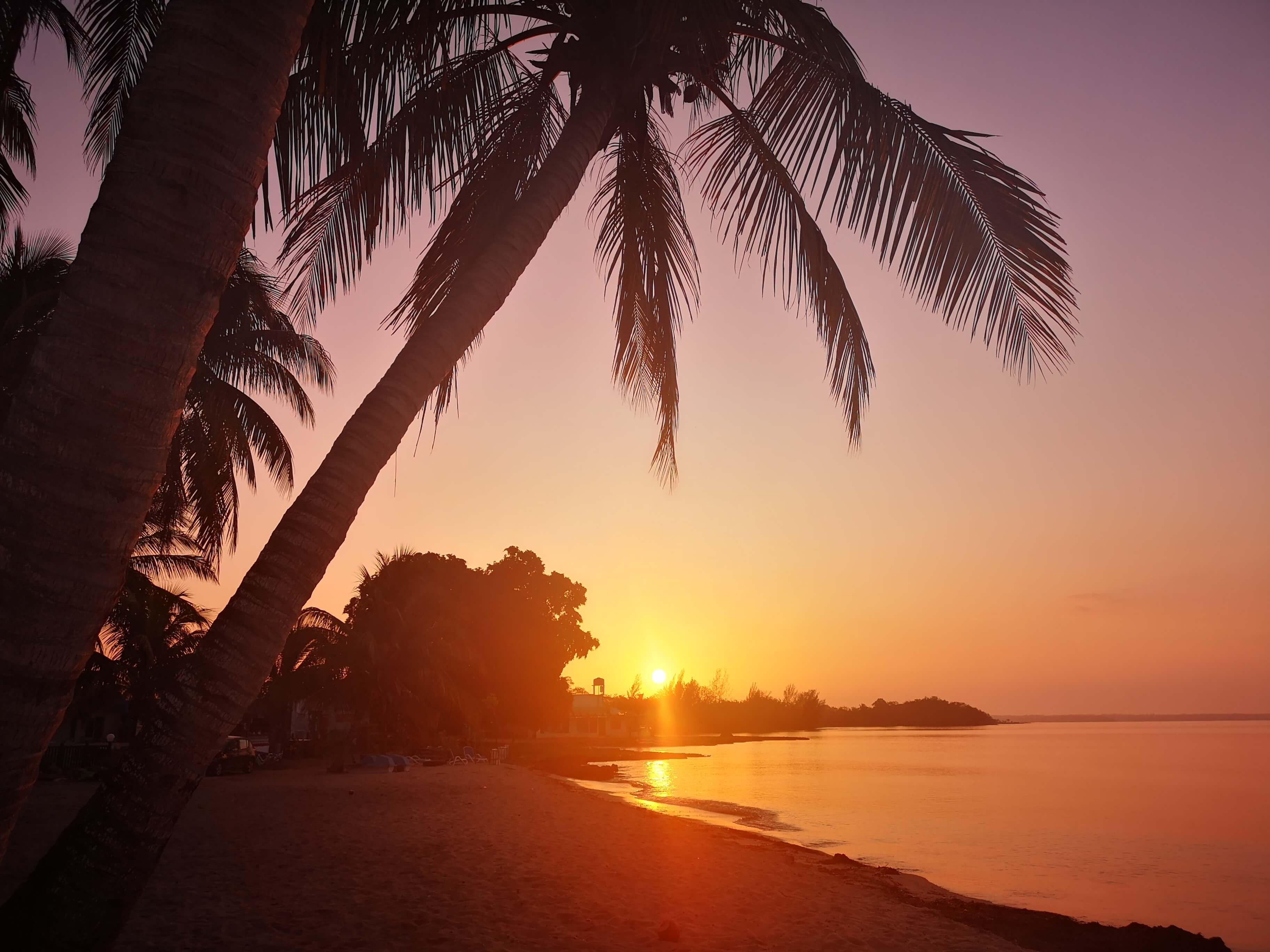 Grisebukta. Fantastiske solnedganger