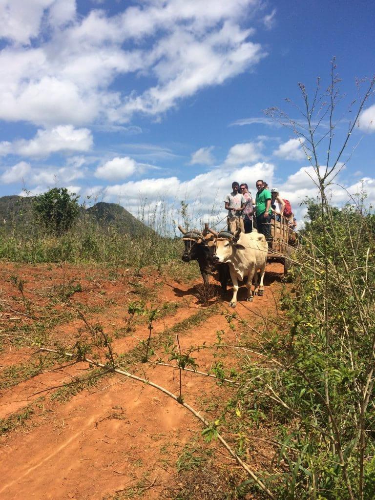 Landsbygda på Cuba