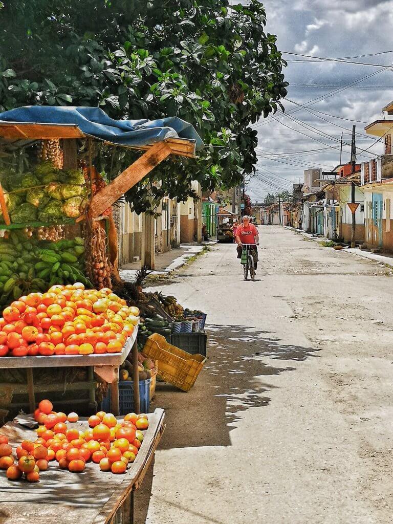 Cuba på ekte med Cubakone travels